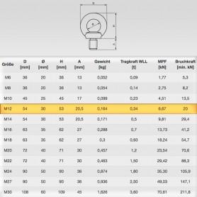 M12 Ringschrauben - Augenschrauben DIN 580 - WLL 0,34t - 340kg