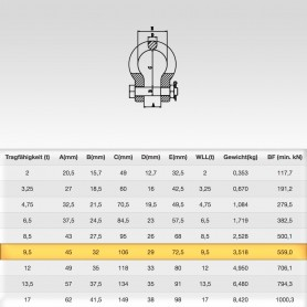 9,5t Hochfest Schäkel geschweift mit Sicherungsbolzen - Rundschäkel Verbinder - Tragfähigkeit 9500kg